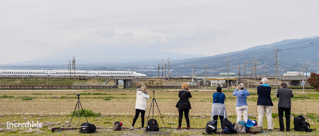 The team shooting a passing shinkansen.