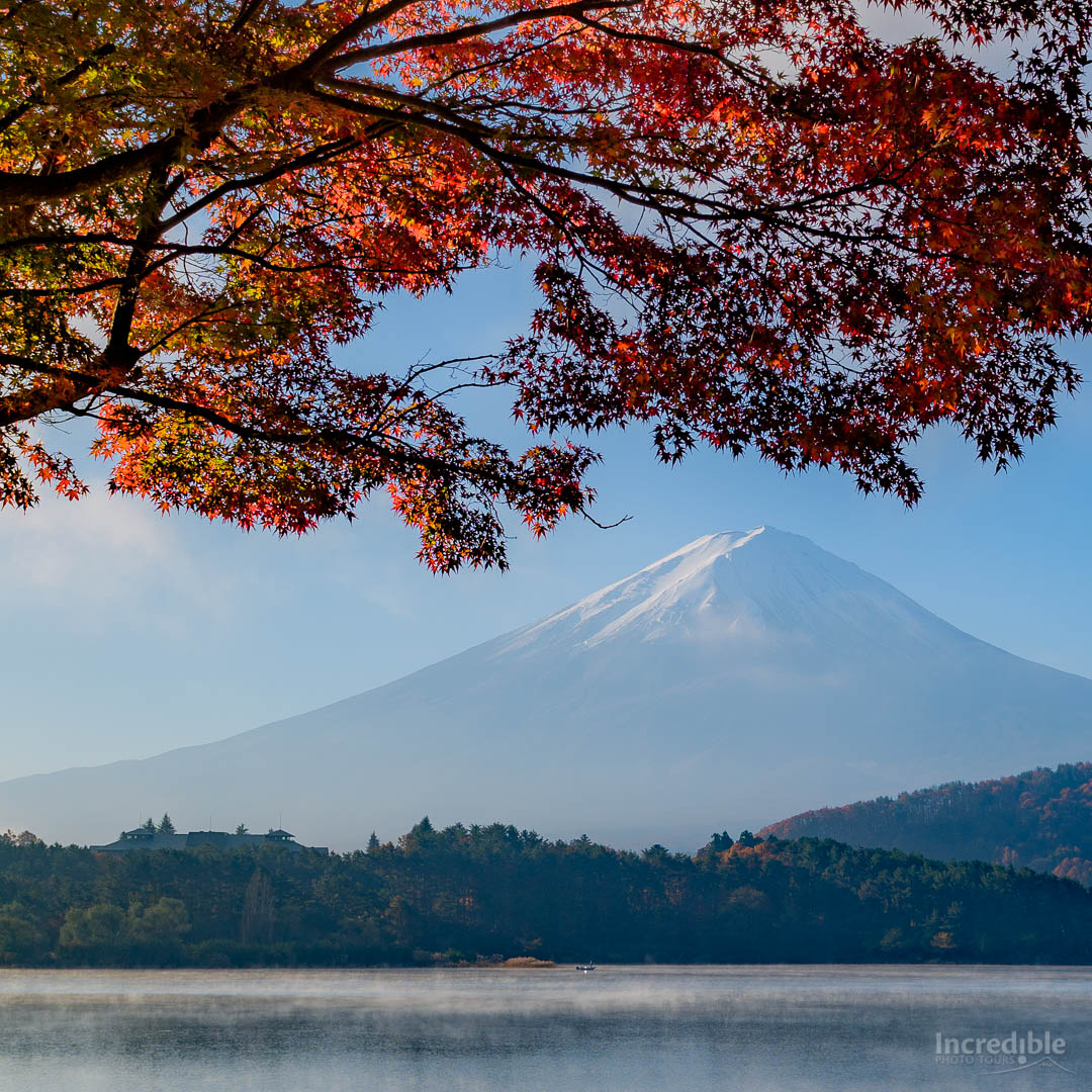 Mount Fuji and maple leaves